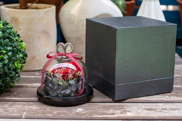 Aranjament trandafir criogenat 5+ giftbox