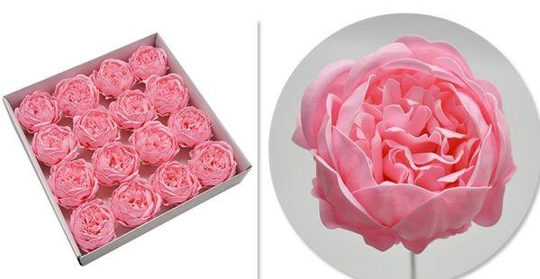 Bujor sapun S/16 roz