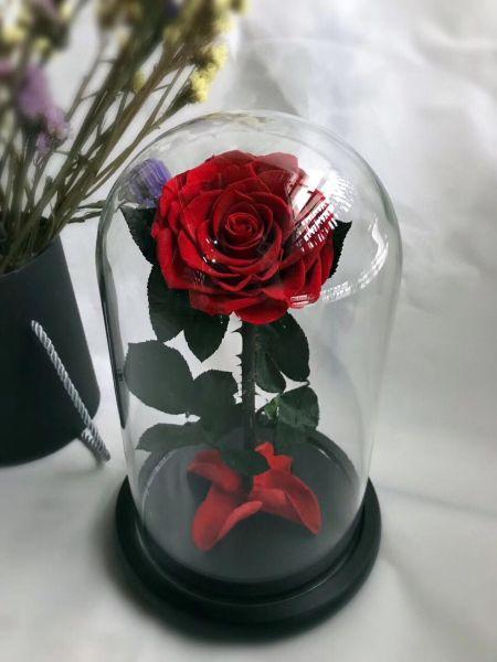Cupola sticla 12x22cm blat negru