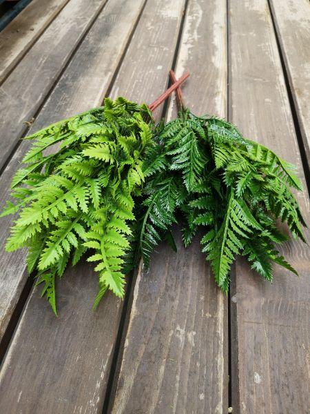 Frunze artificiale Leatherfern verde inchis